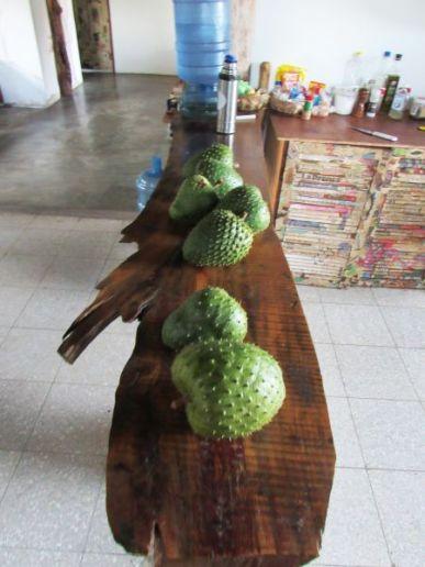 Guanábanas. Boquete / Panamá