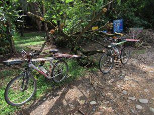 Pegando los carteles del Camping Cola Ballena en Parque Marino Ballena / Uvita