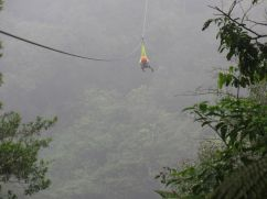 Canopy (Superman) camino a Bajo de los Rodríguez / San Carlos