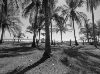Playa San Miguel / Guanacaste