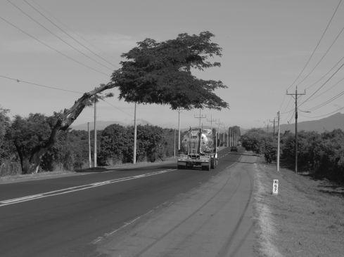 En ruta hacia Zacatecoluca
