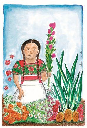 Marchanta / Oaxaca / México