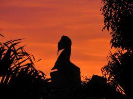 Atardecer en Xul Ha - Quintana Roo
