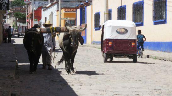 Teotitlán del Valle - Oaxaca