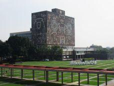 Biblioteca en Ciudad Universitaria (O'Gorman) - UNAM - Ciudad de México